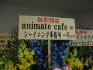 アニメイトカフェ うたプリコラボ -ゴロゴロ生活-
